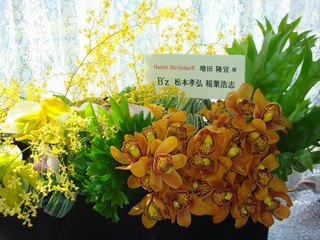 flower2011_2_26.jpg